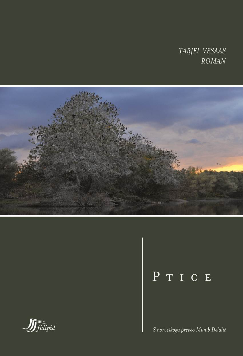 Ptice (roman)